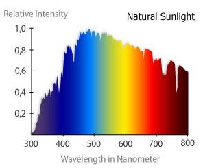 blue light – daylight spectrograms 1