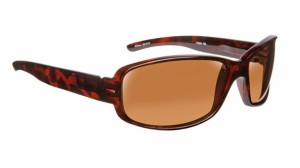 driver fatigue and eye strain_Dioptics Polarized Sunglasses 1