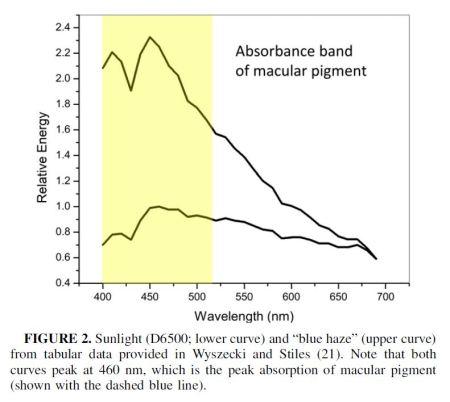 anti-glare computer eye strain diet-macular pigment vs sunlight and blue haze