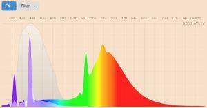 Blue filter - F4 Warm white fluorescent 2900K spectral power distribution